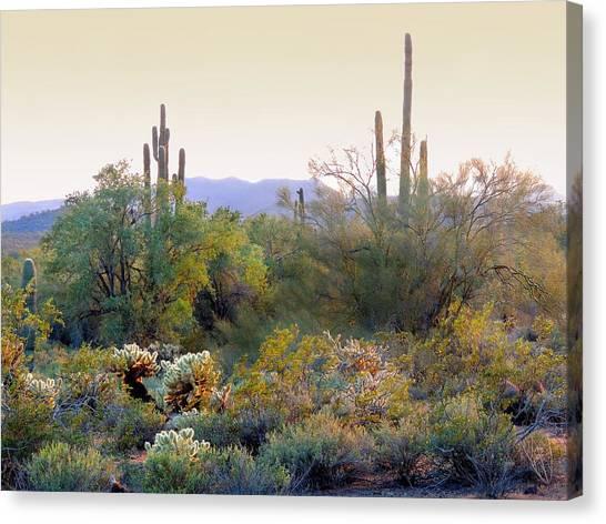 Arizona Spirit Canvas Print