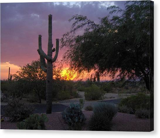 Arizona Sunset Canvas Print by Catherine Swerediuk