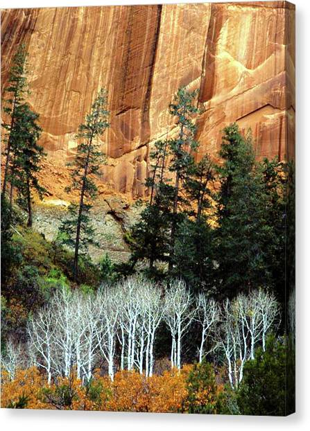 Arizona's Betatkin Aspens Canvas Print