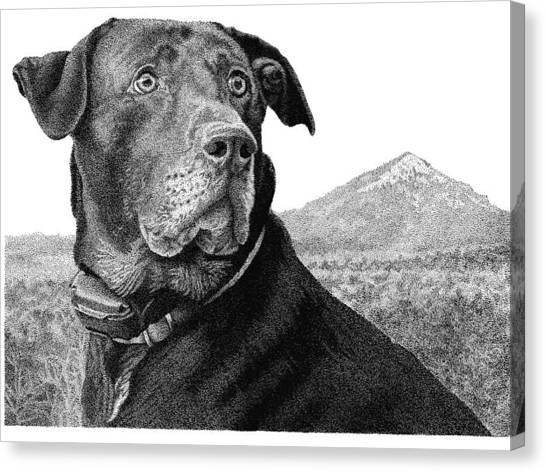 Arkansas Lab Canvas Print by Rob Christensen
