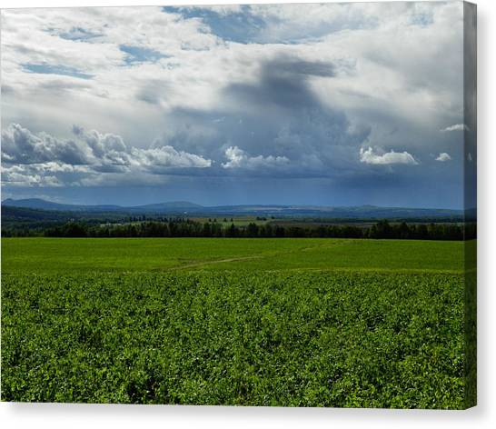 Aroostook County 3 Canvas Print