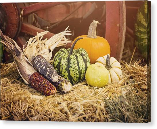 Indian Corn Canvas Print - Arrival Of Autumn by Heather Applegate