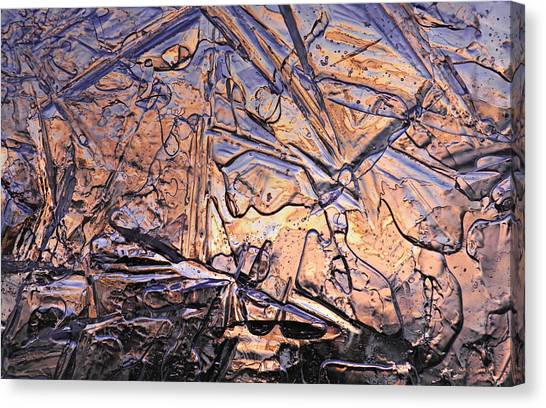 Art Of Ice 2 Canvas Print