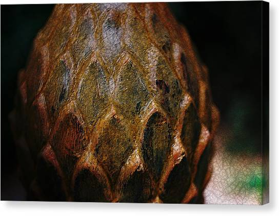 Artichoke Fountain Canvas Print by Malgorzata Fairman