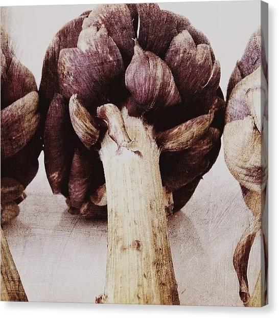 Artichoke Canvas Print - #artichokes - One Of My Favorite Things by Jill Waterbury