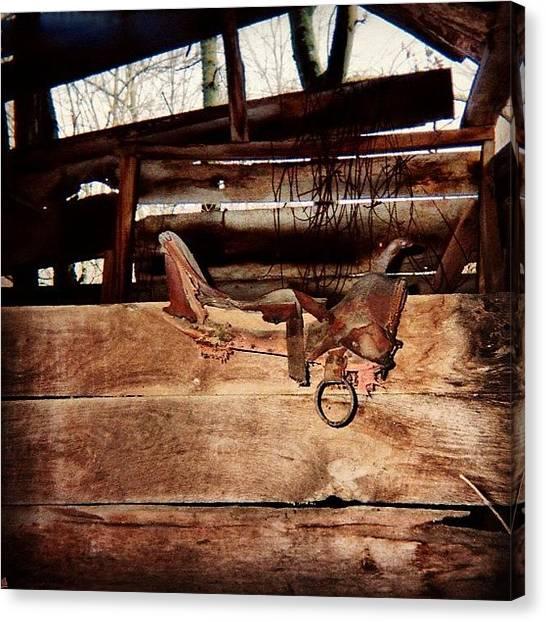 Saddles Canvas Print - #artsypiccentral #antique by J Z