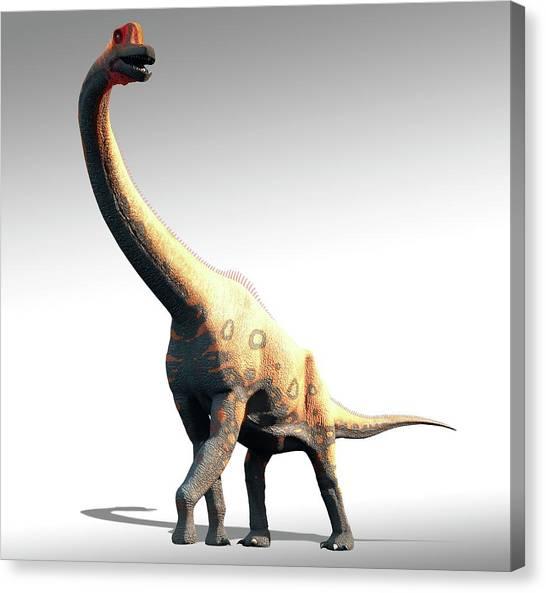 Brachiosaurus Canvas Print - Artwork Of Brachiosaurus by Mark Garlick