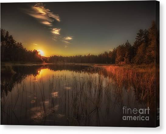As In A Dream Canvas Print