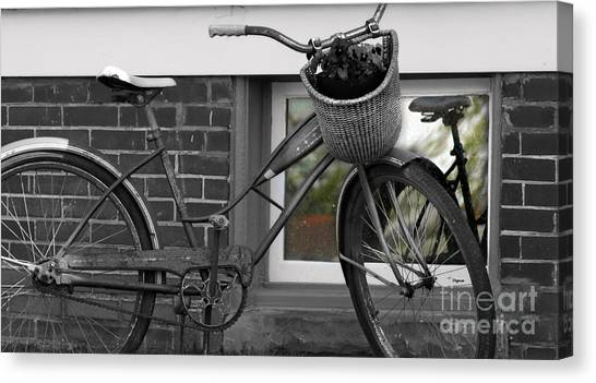 As Time Cycles Past Canvas Print by Steven Digman