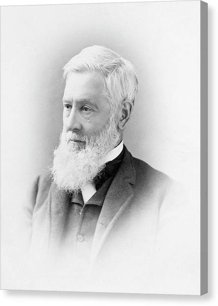 Asa Gray Canvas Print by American Philosophical Society
