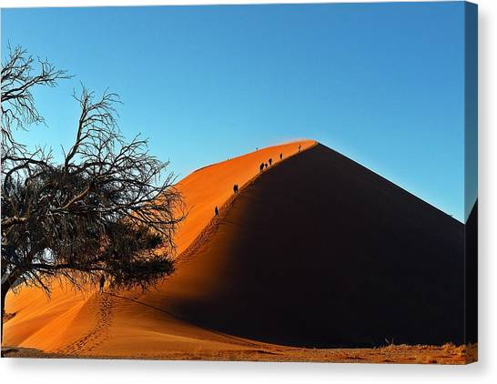 Ascent Of Dune 45 Canvas Print by Liudmila Di