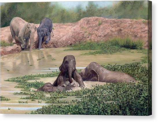 Asian Elephants - In Support Of Boon Lott's Elephant Sanctuary Canvas Print