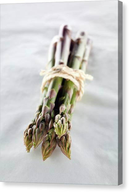 Asparagus Canvas Print - Asparagus Bundle by Patrick Llewelyn-davies/science Photo Library
