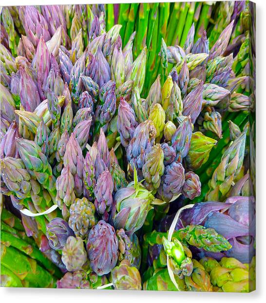 Canvas Print featuring the photograph Asparagus by Dee Flouton