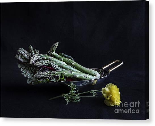 Asparagus Canvas Print - Asparagus by Elena Nosyreva