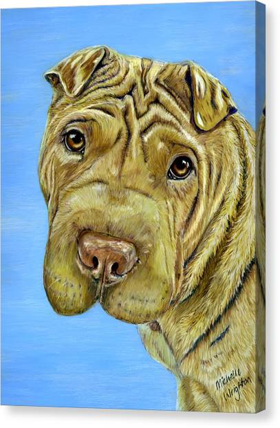 Beautiful Shar-pei Dog Portrait Canvas Print