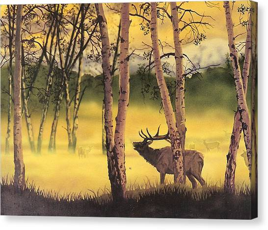 Aspen Challenge Canvas Print