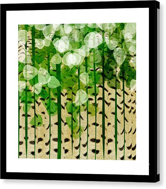 Aspen Colorado Abstract Square 2 Canvas Print
