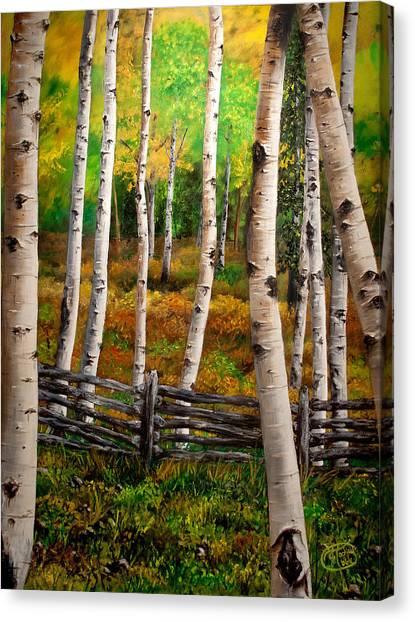 Aspen Meadow Canvas Print