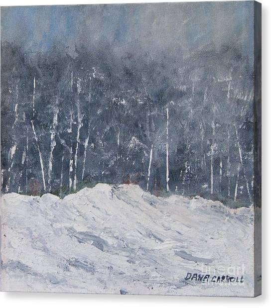 Aspen Ridge Blizzard Canvas Print by Dana Carroll