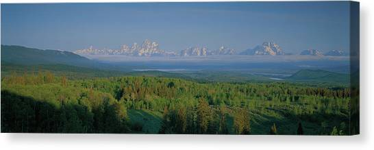 Teton National Forest Canvas Print - Aspens In Leidy Highlands With View by Leine Stikkel