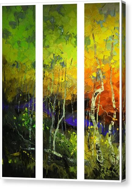 Aspens In Season Canvas Print