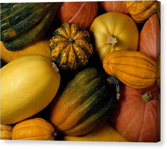 Assortment Of Squash Canvas Print by Brand X Pictures