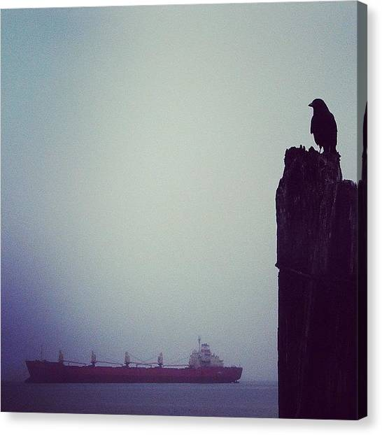 Ravens Canvas Print - #astoria #oregon #bird #crow #raven by Karen Clarke