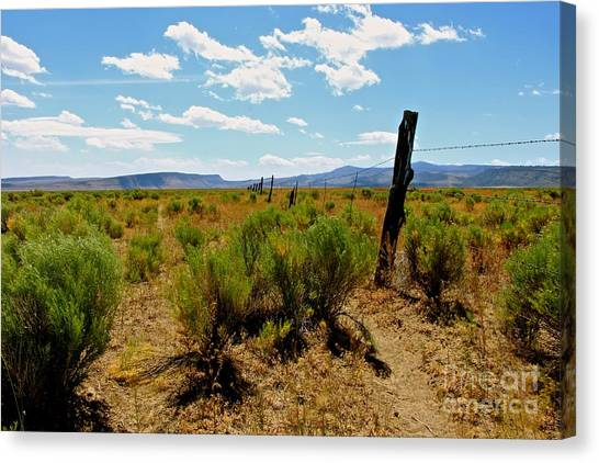 At Country  Canvas Print by Tim Rice
