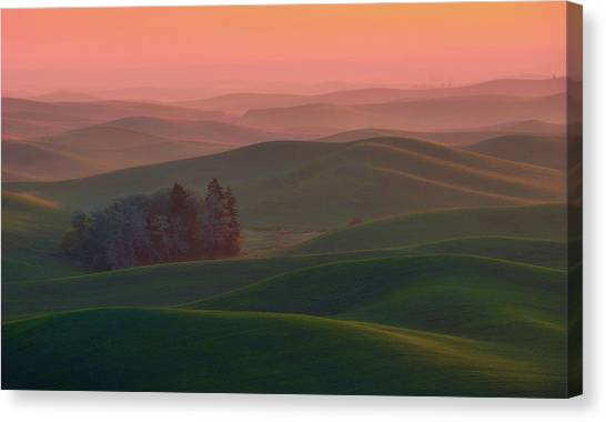 Rolling Hills Canvas Print - At Dawn by Naphat Chantaravisoot