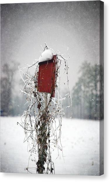 At Home In The Snow Canvas Print