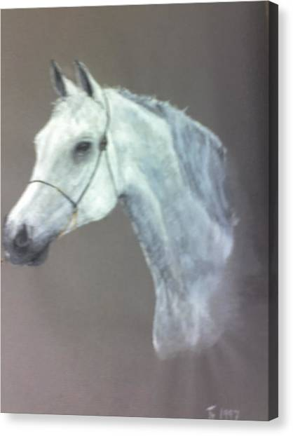 At Stud Canvas Print by Stephen Thomson