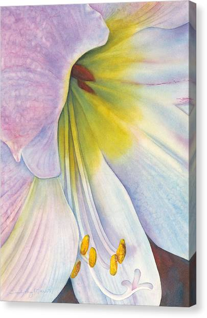 Amaryllis Canvas Print - At The Altar by Sandy Haight