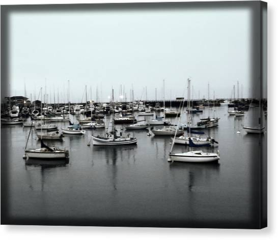 At The Bay  Canvas Print