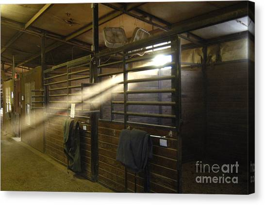 At The Stable Canvas Print