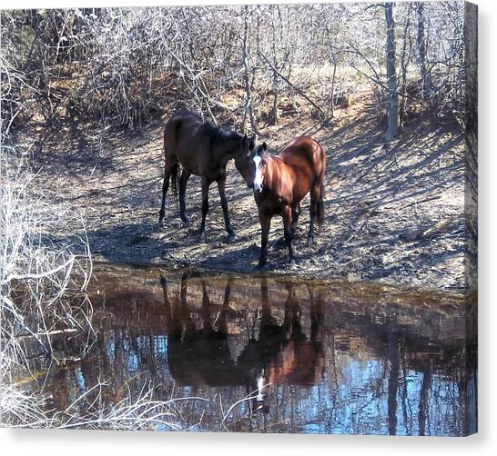 At The Water Hole Canvas Print by Rosalie Klidies