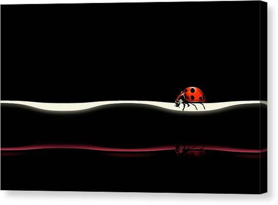 Ladybugs Canvas Print - At Your Pace by Natalia Baras