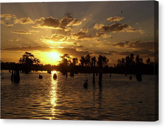 Atchafalaya Sunrise Canvas Print