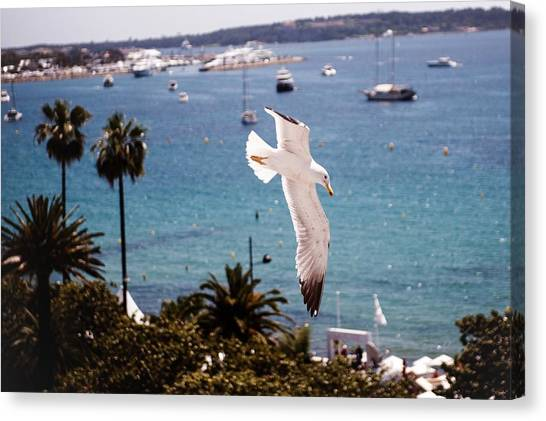 Atmosphere - The 67th Annual Cannes Canvas Print