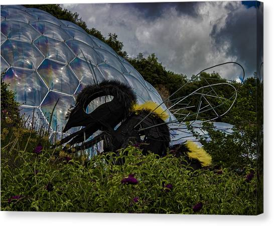 Wasp.insect Canvas Print - Attack Of The Giant Wasp by Martin Newman