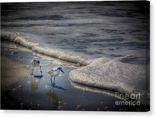 Sandpipers Canvas Print - Attack Of The Sea Foam by Marvin Spates