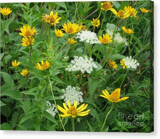 August Wildflowers Canvas Print