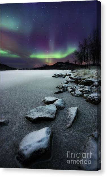 Night Lights Canvas Print - Aurora Borealis Over Sandvannet Lake by Arild Heitmann