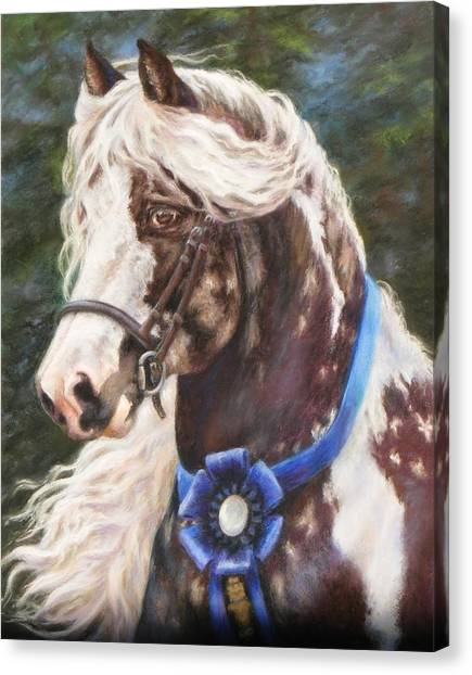 Austin Gypsy Stallion Canvas Print