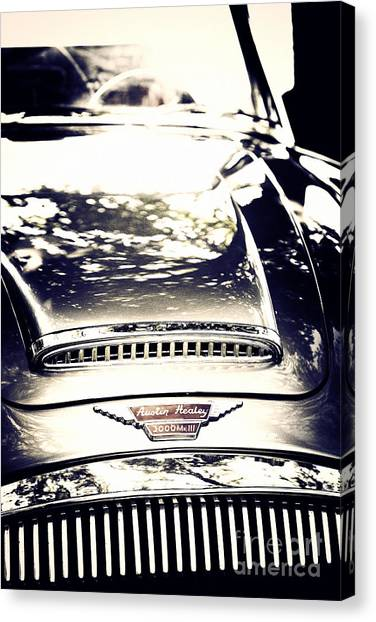 Austin Healey 3000 Canvas Print