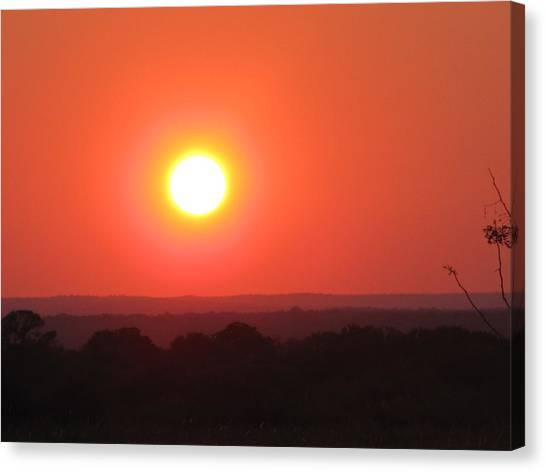 The University Of Texas Canvas Print - Austin Texas Longhorn Sunset by Shawn Hughes