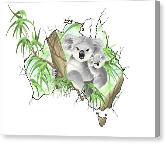 Koala Canvas Print - Australia by Veronica Minozzi