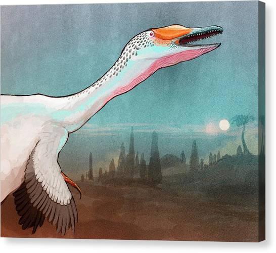 Argentinian Canvas Print - Austroraptor Dinosaur by Nemo Ramjet