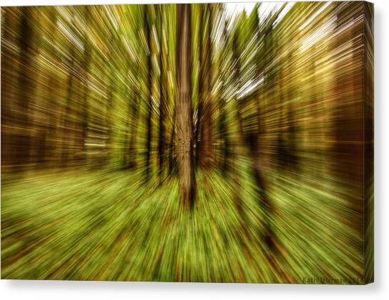 Autumn Abstract Canvas Print by Kathi Isserman