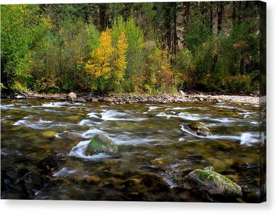 Boise National Forest Canvas Print - Autumn Along The Deadwood River by Ed  Riche